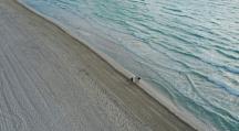 réchauffement climatique océans