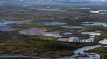 les barrages flottants n'ont pas arrêté la pollution en arctique russe