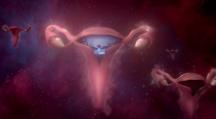 uterus spot publicitaire Libresse
