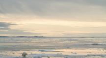 Arctique : record absolu de chaleur dans le Svalbard norvégien