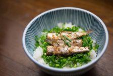 sardines et riz dans une assiette