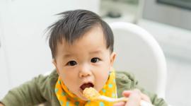 Rappel de desserts bio pour bébé et de fromages