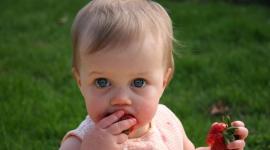 bébé qui mange une fraise