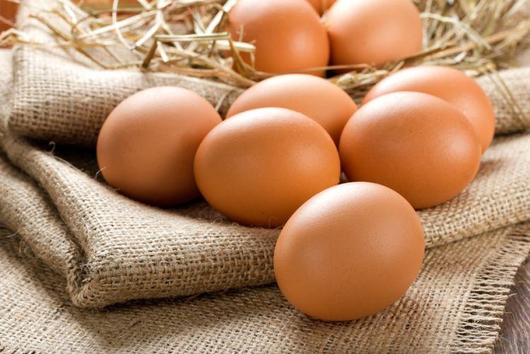 Es posible hacer huevos sin gallina.  |  Bio en el centro de atención
