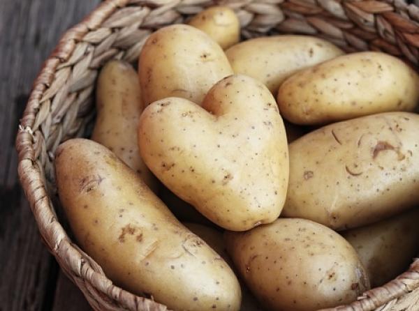 Pomme de terre en forme de coeur dans un panier de pommes de terres normales