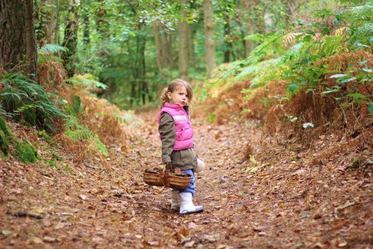 Une petite fille faisant la cueillette en plein bois