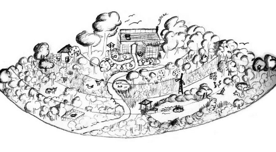 Shéma d'un jardin en parmaculture