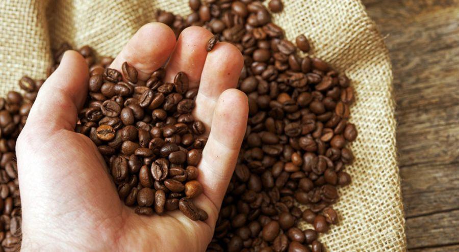 Choisir son café : de l'esclavagisme du XVIIe au commerce équitable moderne