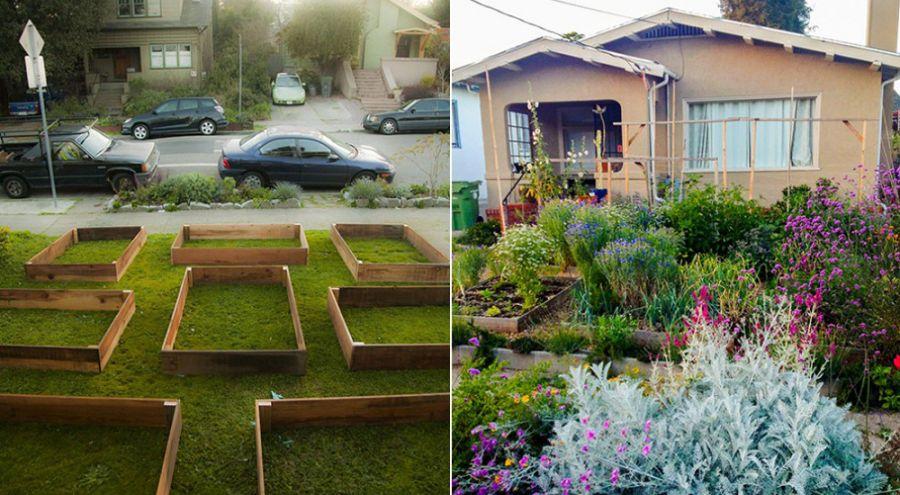 Jardin en permaculture avant et après