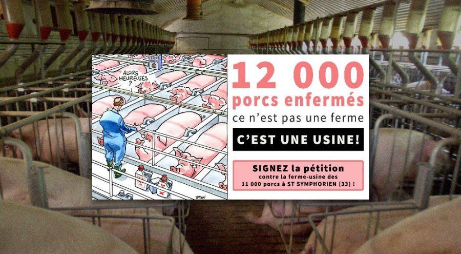 Panneau de mobilisation contre un élevage usine par Agir