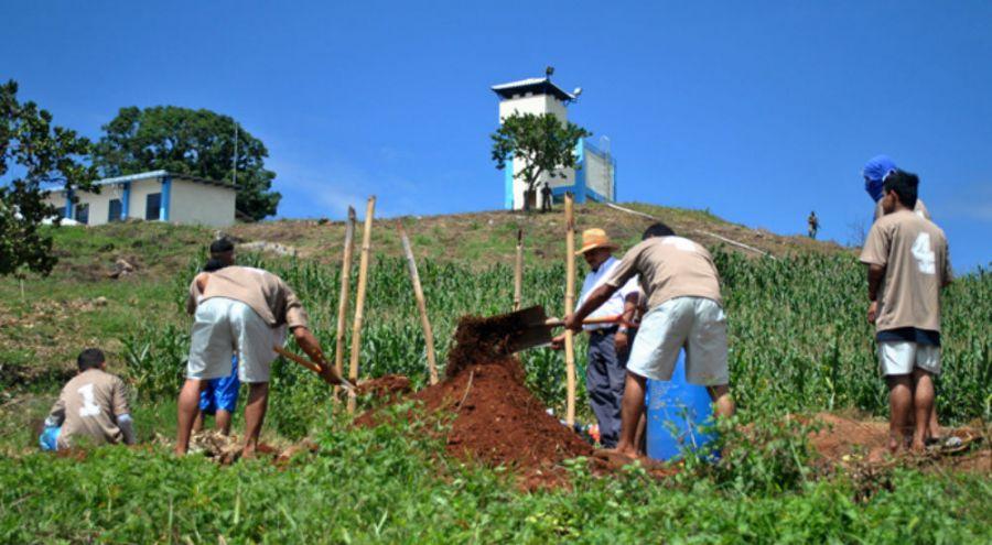 Paysans au Salvador