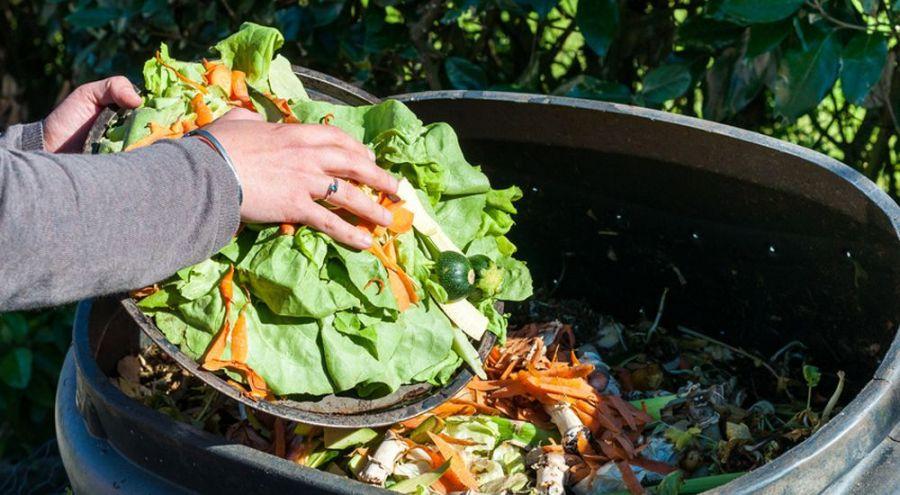 Une personne jette des restes de légumes à la poubelle