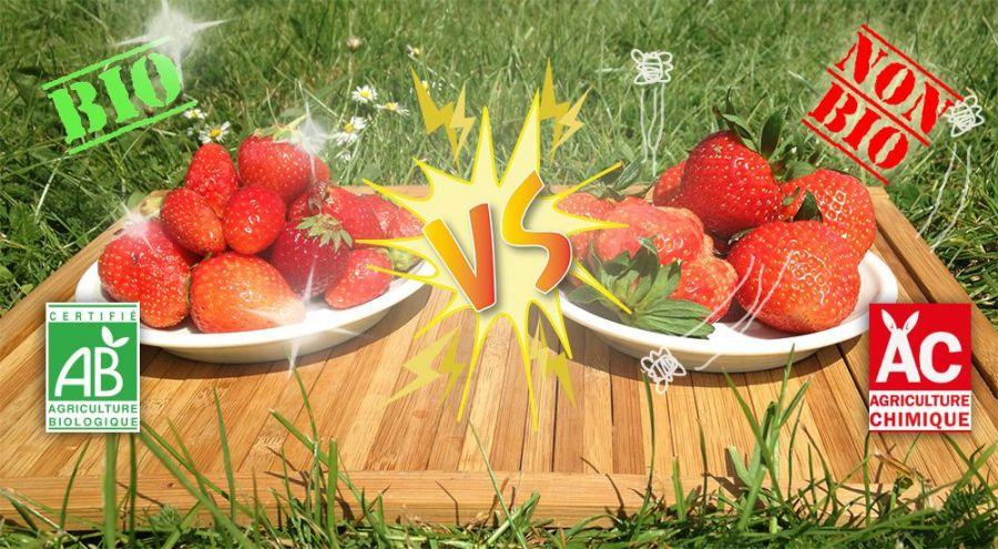 Plateau de fraises dans l'herbe
