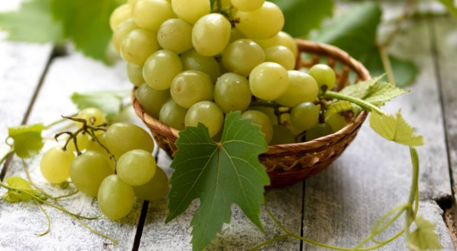 Branches de raisins