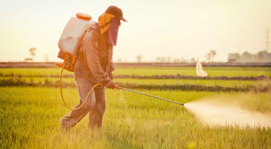 Fermier qui déverse des pesticides