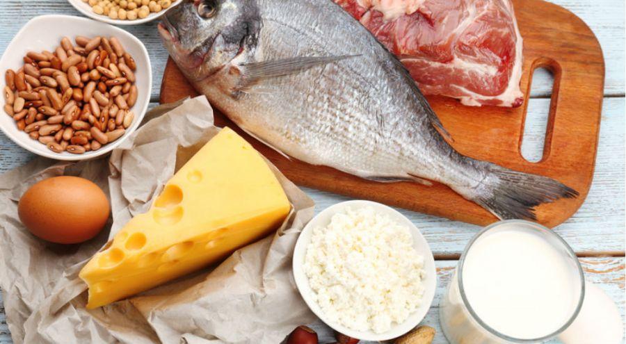 Sélection d'aliments d'origine animale et végétale riches en protéines