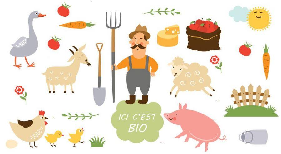 Dessins de différents animaux et légumes d'une ferme biologique