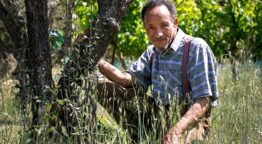 Pierre Rabhi assit dans son jardin contre un arbre