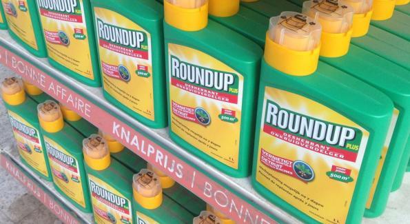 du round up sur des étalages en supermarché