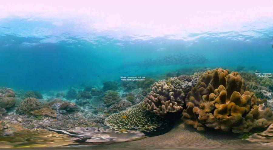 un récif corallien en Indonésie