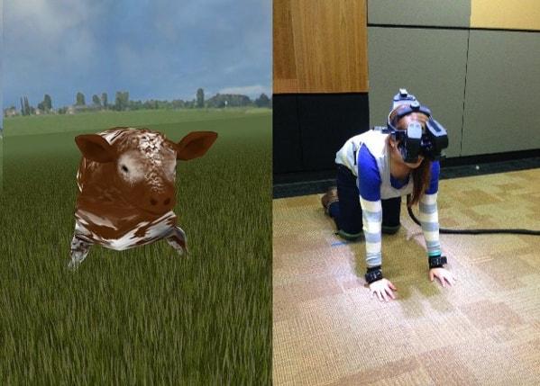 des images de synthèses qui propose aux volontaires une immersion virtuelle des conditions animales