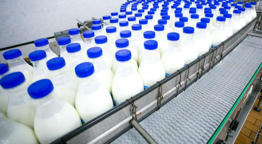 des bouteilles de lait dans une usine