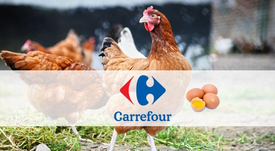 Les supermarchés Carrefour ne vendront plu d'oeufs de poules élevées en cage