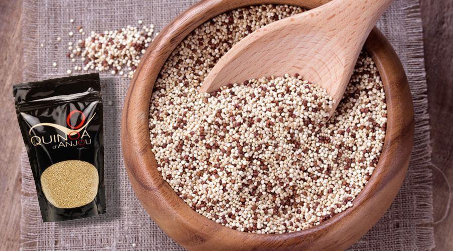 un agriculteur présente son quinoa français produit à Anjou
