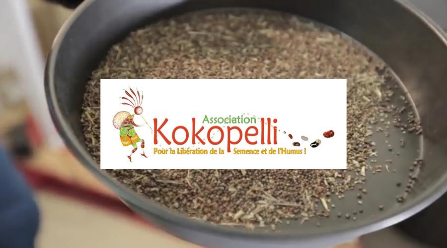Sot de graines bio dans les locaux de Kokopelli
