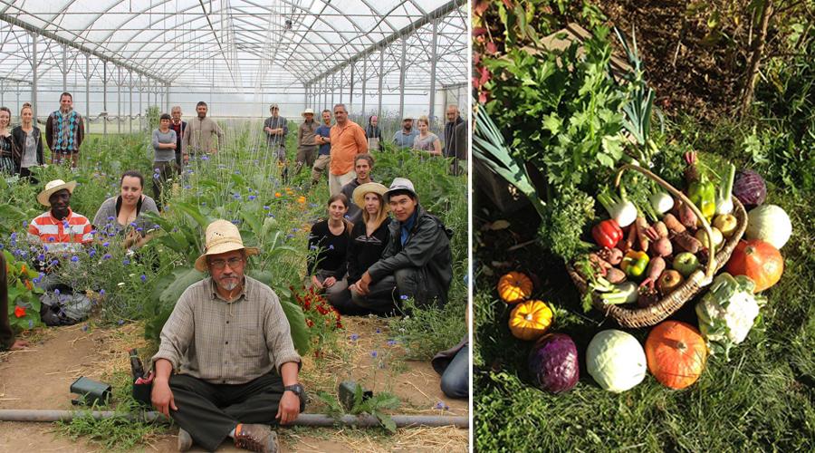 """""""Il ne faut pas changer l'agriculture, il faut changer le monde"""", Jean-Guy Henckel"""