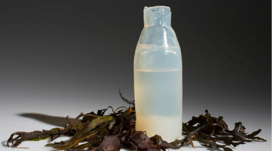 Cette bouteille d'eau fabriquée à base d'agar-agar est biodégradable