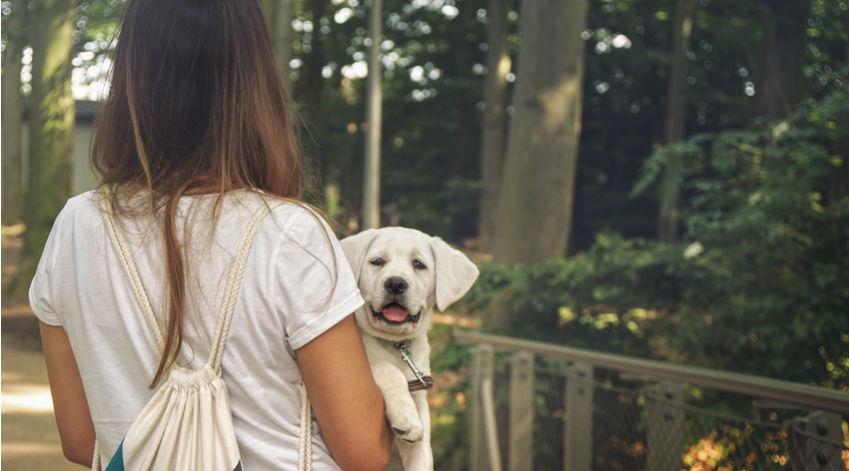 Adopter un chien permettrait de vivre plus longtemps