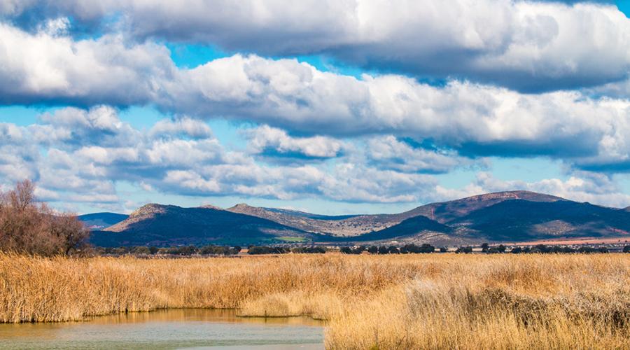 Utiliser les zones humides pour la gestion de l'eau