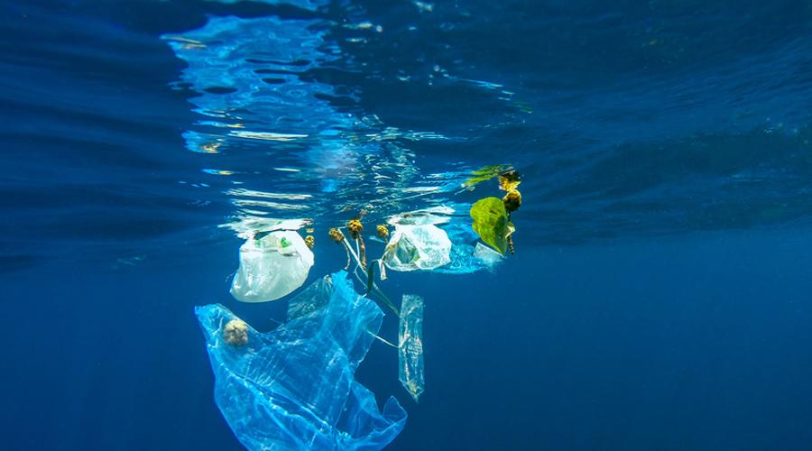 Pollution marine et sac plastique dans l'océan