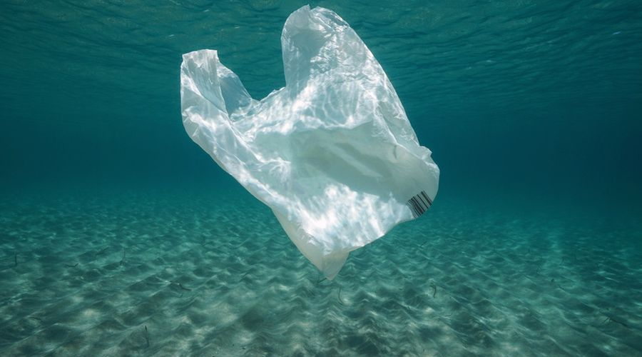 sac plastique mer pollution