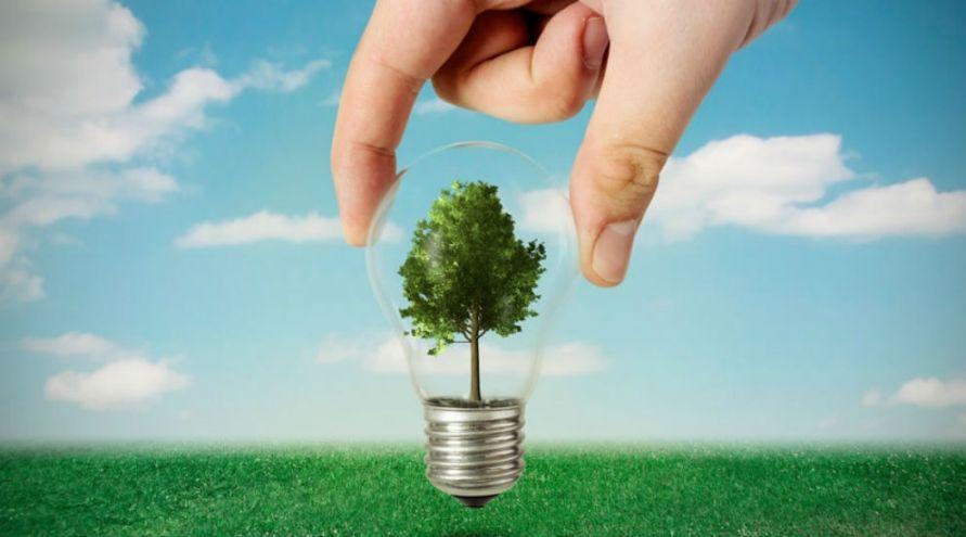 Electricité verte : Greenpeace met un carton rouge aux géants de l'énergie