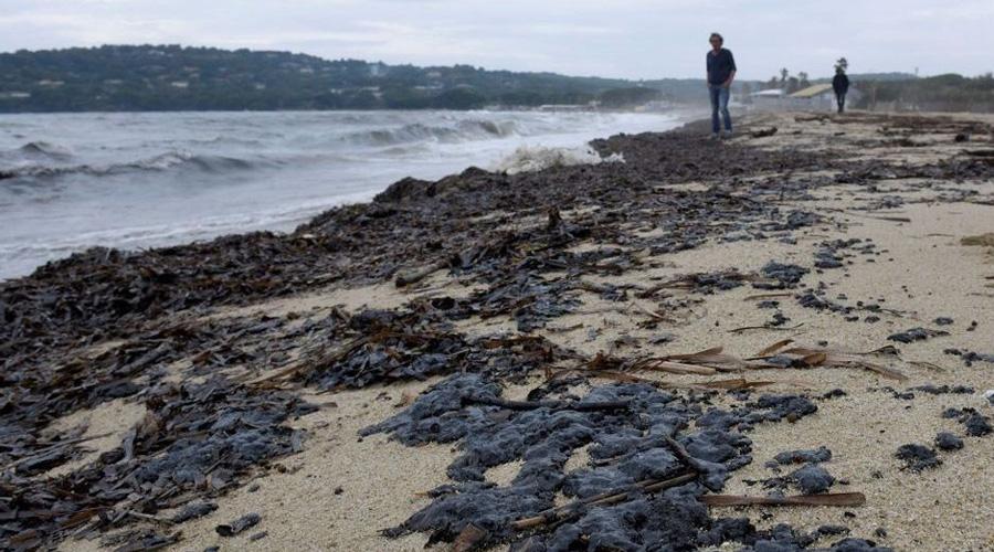 boulettes pétrole plage Var