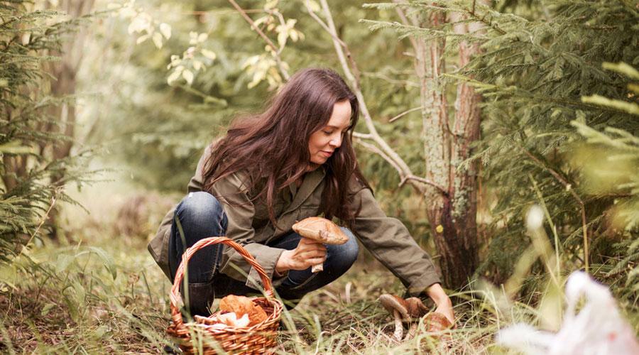 Femme et champignon