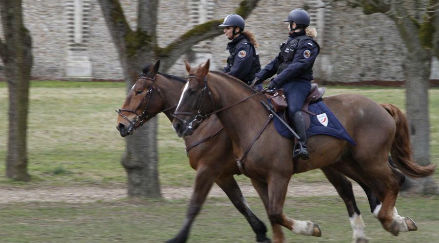 Mise en place d'une police verte pour protéger l'environnement