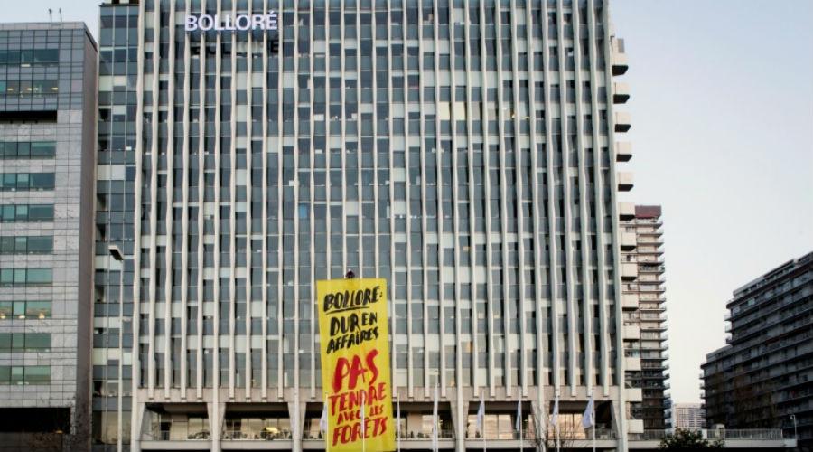 Huile de palme : Bolloré assigné en justice par des ONG et syndicats