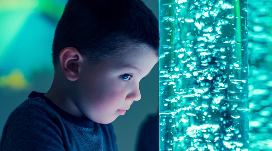 Greffe fécale : et si elle permettait de réduire les signes de l'autisme ?