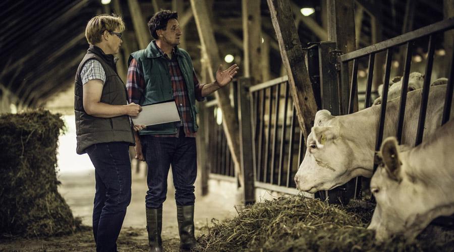 Ecouter les animaux d'élevage permet de s'assurer leur bien-être