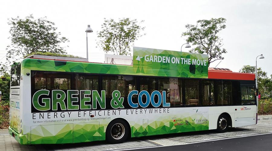 Photos : pour rafraîchir les passagers, ces bus sont dotés de toits végétalisés