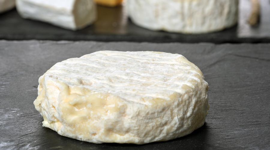 Bactérie E. Coli : retrait-rappel de fromages au lait cru