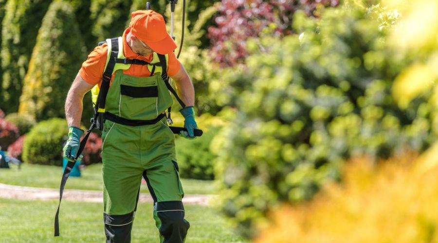 Les arrêtés anti-pesticides se succèdent en France : les villes concernées