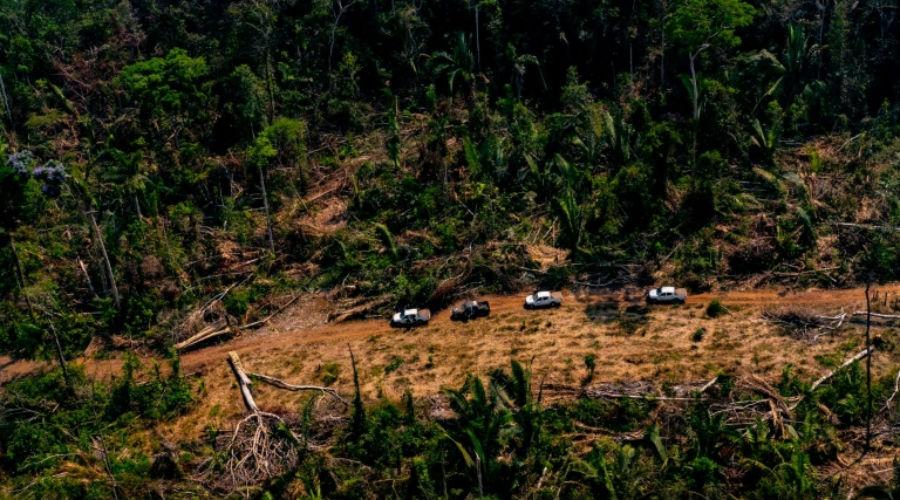 Colombie : le sommet sur l'Amazonie organisé ce vendredi… sans Bolsonaro !