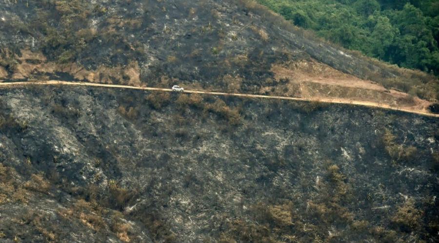 Feux de forêt en Colombie : du jamais vu depuis vingt ans !