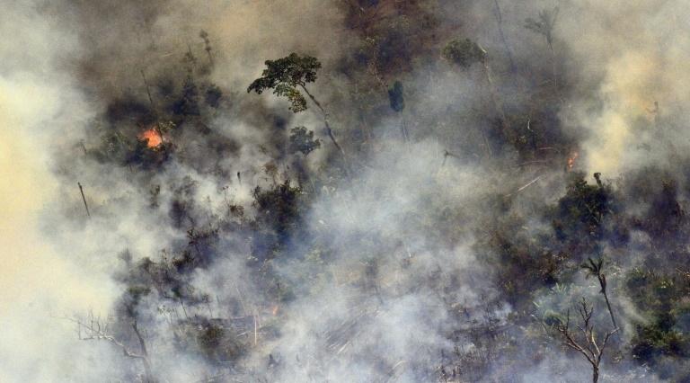 incendie Amazonie Brésil