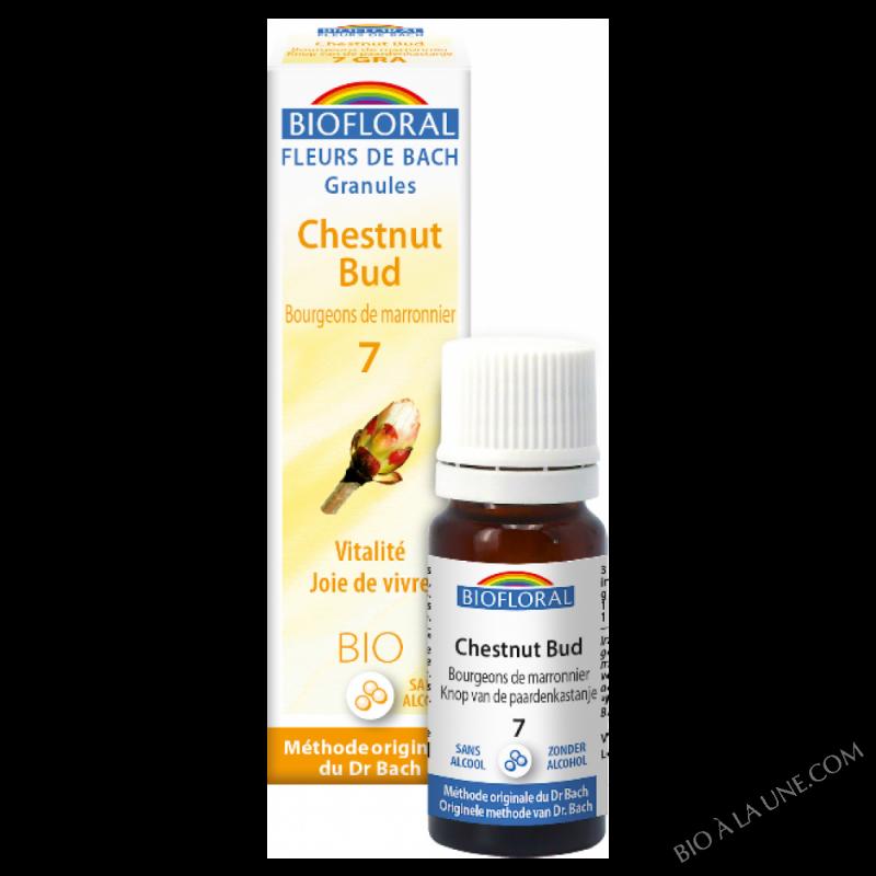 Fleurs de Bach Granule 07 - Chestnut Bud, bourgeons marronnier BIO