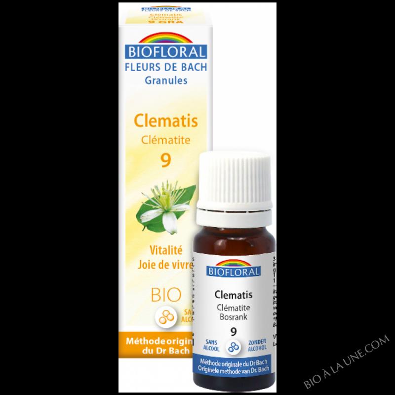 Fleurs de Bach Granule 09 - Clematis, clématite BIO
